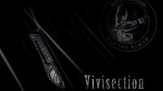 The MMA Vivisection - Bellator 173: McGeary vs. McDermott