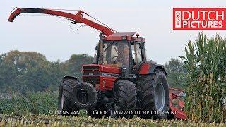 Mais hakselen 2017 | Case International 1455XL | Busweiler | Maishäckseln | Harvesting maize