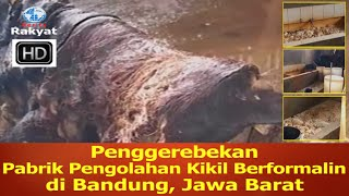 Penggerebekan Pabrik Pengolahan Kikil Berformalin di Bandung...