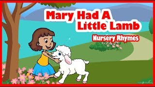 Mary Had A Little Lamb | Mary Had A Little Lamb Nursery Rhymes | API KIDS - Cartoon Animation Rhymes