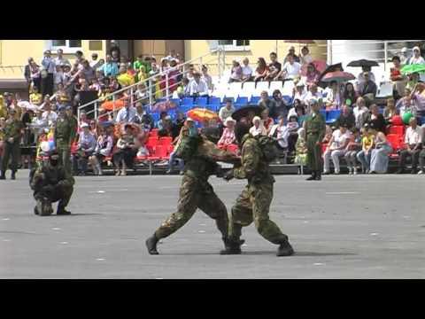 Показательное выступление СОБР Ульяновск 9 мая 2012 год