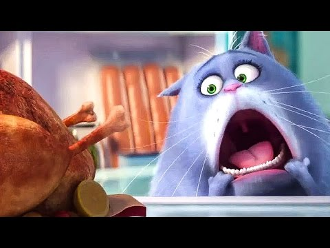 PETS Trailer Deutsch German (2016)