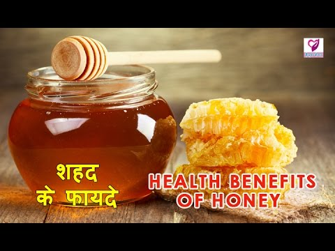 Honey - Health Benefits | शहद के फायदे | Health Care Tips In Hindi
