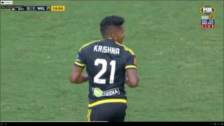 Brisbane Roar vs Wellington Phoenix 25.02.17 FULL Match Highlights HD