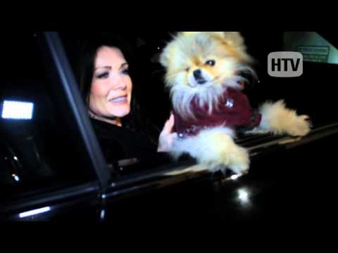 Pomeranian: Lisa Vanderpump And Giggy Do Dinner With Drake. video