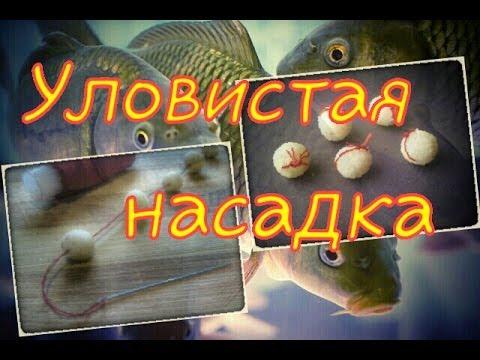 Уловистая насадка на ТРОФЕЙНУЮ РЫБУ.Рыбалка