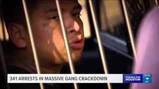 341 arrests made in massive gang crackdown