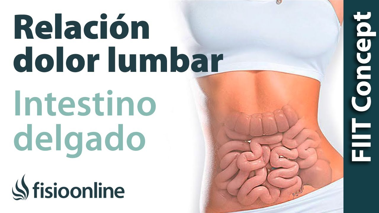 Chupe en la grasa muscular del intestino