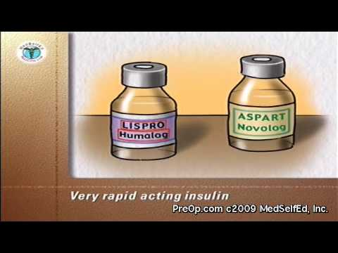 Diabetes Patient Education Types of insulin