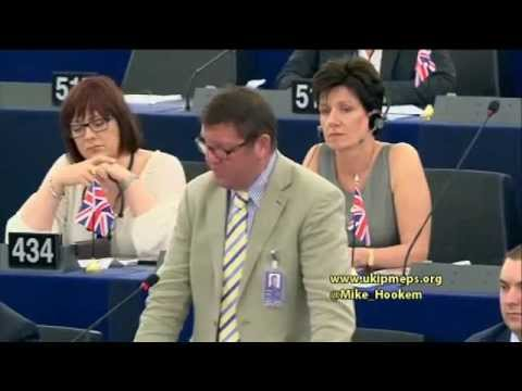 EU contributed to starting Ukraine conflict - @UKIP MEP Mike Hookem