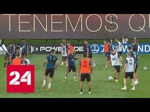 Увидеть Красную фурию: сборная Испании провела открытую тренировку в Краснодаре - Россия 24