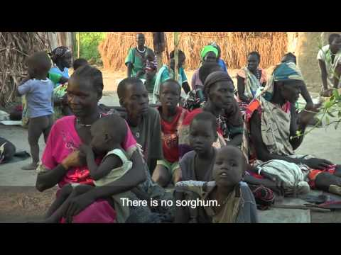 South Sudan: Displaced by conflict, struggling with hunger