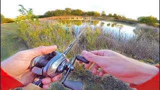 Frog Fishing in TINY Mud Hole Retention Pond