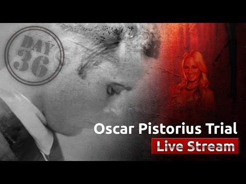Oscar Pistorius Trial [Day 36]