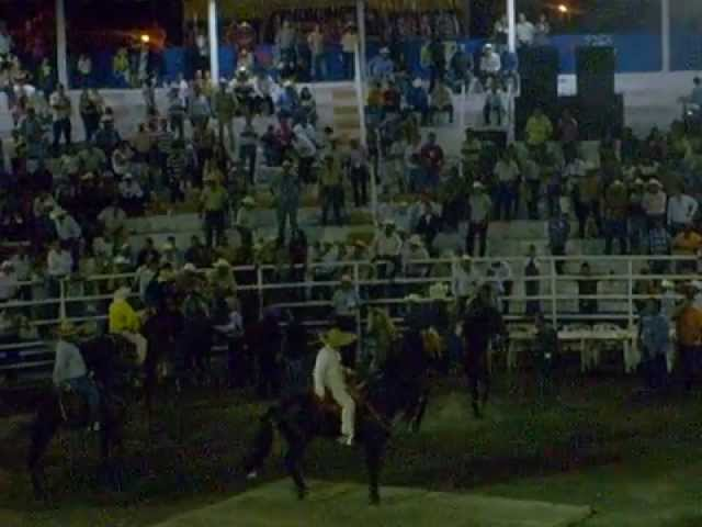 CONCURSO DEL CABALLO BAILADOR  EN TECOMAN 2009