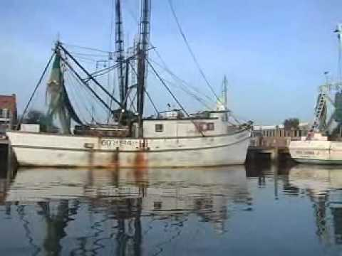 Apalachicola fishing videos for Apalachicola fishing report