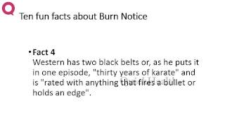 Ten Facts About Burn Notice My Health Health Tips