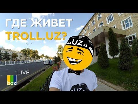 TheBox Live: Нашел квартиру в Ташкенте!