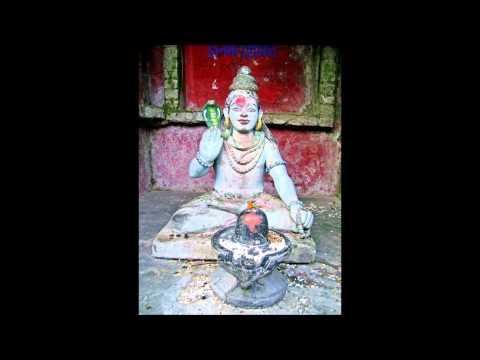 Sri Rudra Nyasam video