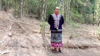 Lug Txaj Hmoob Thaib part 2