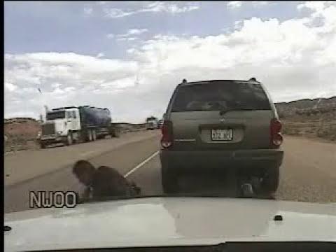 Un policía de EEUU dispara con la pistola eléctrica Taser a un conductor por no firmar una multa