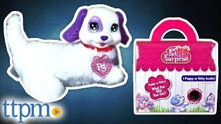 Pet Surprise - Puppy or Kitty Inside? | Collectible Toys | Just Play Toys