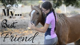 Goodbye to my Heart Horse