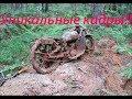 Нашли Мотоцикл в лесу, времен войны Уникальная находка ! Found a wartime motorcycle in the forest!