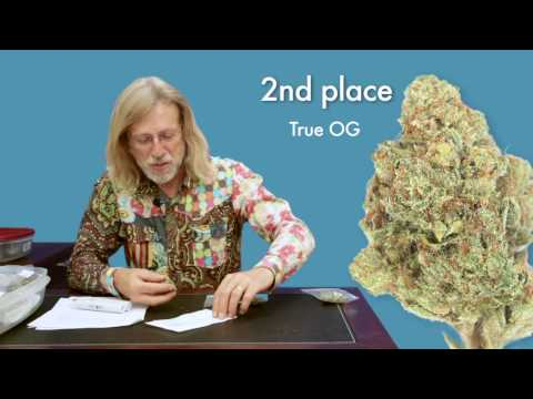 Jorge Cervantes: 2010 High Times Medical Cup - Indica