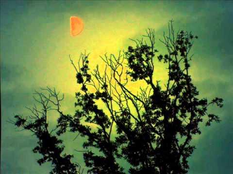 Clip video موسيقىرعب -Musique de films d'horreur-Kevin macleod - Musique Gratuite Muzikoo
