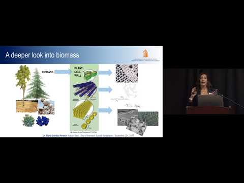 Maria Soledad Peresin- Rethinking the Use of Trees: Advanced Materials from Nanocellulose
