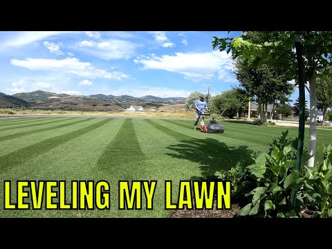 How to TOP DRESS your lawn to make a FLAT LEVEL surface