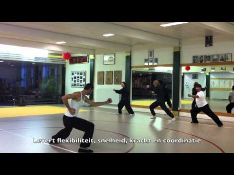 Xing Yi Kung Fu in Amsterdam.mov Image 1