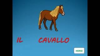 ITALIAN VOCABULARY : ANIMALS - Vocaboli italiani : animali - ITALIAN LESSONS - ITALIENISCH : TIERE