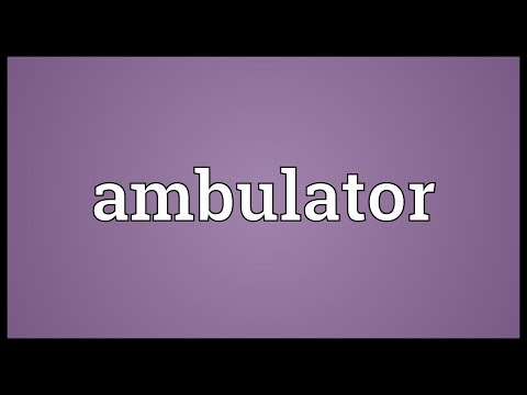 Header of ambulator