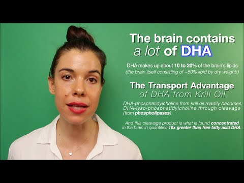 Krill Oil's Brain-DHA Advantage
