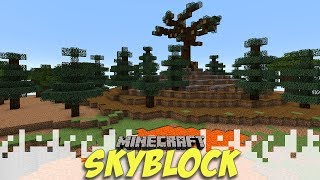 TONS OF WORK! - Skyblock Season 3 - EP08 (Minecraft Video)