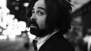 Watch Counting Crows Have You Seen Me Lately video