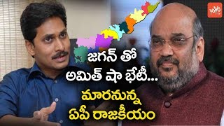 Amit Shah to Meet YS Jagan Over BJP Alliance With YCP For 2019 Elections