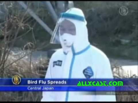 BIRD FLU OUTBREAK REPORTED IN JAPAN - Jan. 27, 2011