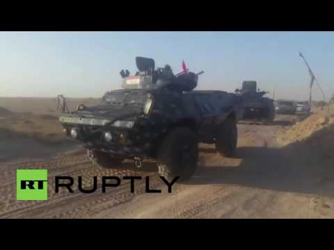 Iraq: Military launches operation to retake Fallujah from IS
