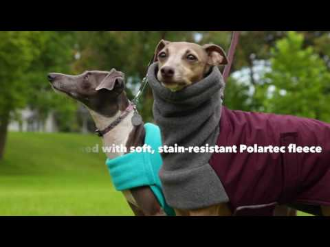 Our Best Rated Warm. Dry Winter Dog Jacket   DogCoats.com