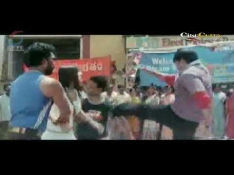 Gopichands Fantastic Action Scene From Bhai-The Lion