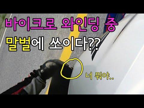 [모모TV] 바이크타고 와인딩 하는데 말벌한테 쏘여본사람? ㅠㅠ /대전월드컵경기장/수안보휴게소/영주희방계곡