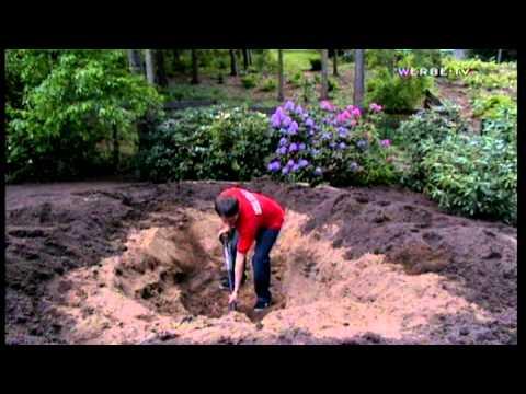 Ein Teich Für Den Eigenen Garten - Tipps Und Tricks Von Hagebaumarkt