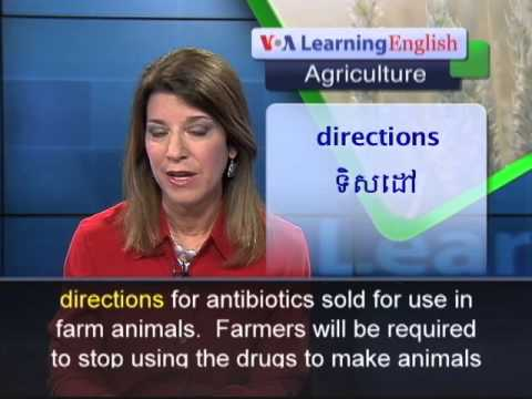 US Officials Want Farmers to Use Less Antibiotics on...