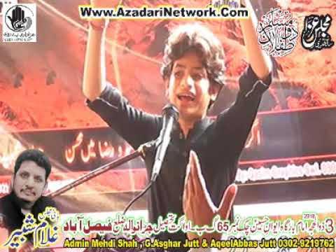Majlis e Aza Zakir Zain Abbas Jevan 3 Zulhaj 2018 Chak 65 Awagat