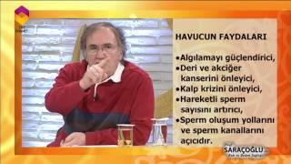 PROF.DR.İBRAHİM SARAÇOĞLU HAVUCUN FAYDALARINI ANLATIYOR