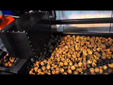 Линия по переработке грецкого ореха