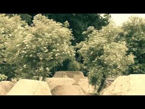 Video Atraksi Sepeda Gunung